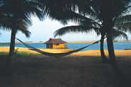 Top 5 Honeymoon Destinations in Kerala