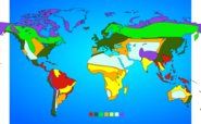 World Map Biomes