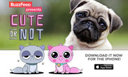 If You Think Tinder Needs More Cute Pets, BuzzFeed Has The App For You