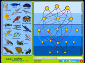 Food Web Game