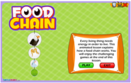 Food Chain and Food Web