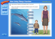 How Living Things Function
