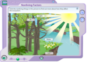 Nonliving Factors