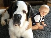 18 Cute Kids with their Big Dogs