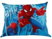 Spiderman Bedrooms on Pinterest