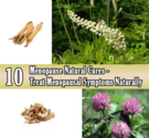 13 Effective Menopause Natural Cures - Treat Menopausal Symptoms Naturally