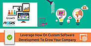 Leverage Now On Custom Software Development To Grow Your Company
