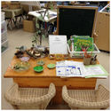 Be Reggio Inspired: Indoor Learning Environments