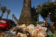 Report calls for big changes in the way Los Angeles tackles trash