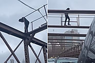Dramatic video shows driver begging man not to jump off Brooklyn Bridge