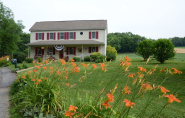 Red Cardinal Bed and Breakfast :: Blog
