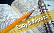 Thesis work india | Project assistance | Essay & Reports