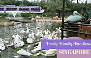 Singapore's Best Family-Friendly Attractions
