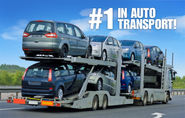 Does It Really Matter Which Auto Shipping Companies You Choose?