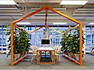 How indoor Plant Hire is changing the world for the better one step at a time