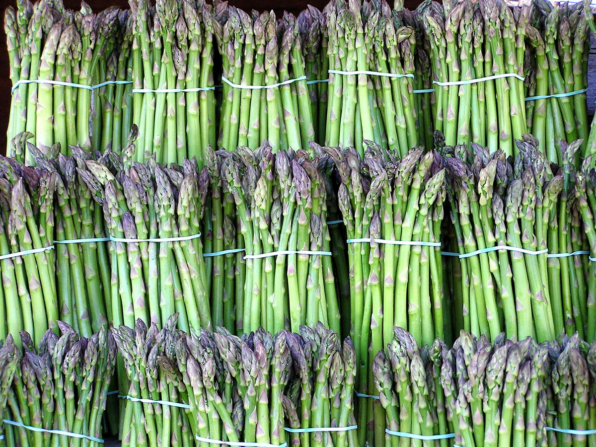Headline for Delicious and Healthy Asparagus Recipes