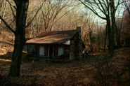 "The Cabin in ""The Evil Dead"""