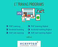 Learning Programs - Bagtheweb