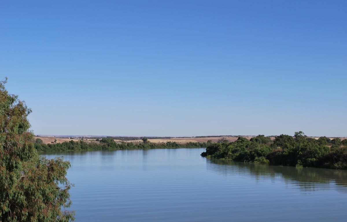 Headline for Things to do on along the Murray River – wonderful journeys