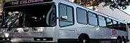 Wedding Transportation Santa Barbara | D&D Limo Bus