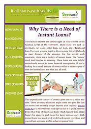 Facility of Instant Loans in New Zealand
