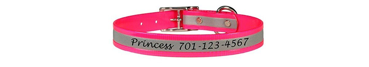 Headline for Personalized Reflective Dog Collars