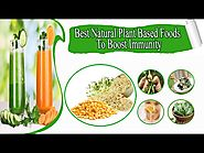 Best Natural Plant Based Foods To Boost Immunity