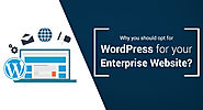 Why You Should Opt For WordPress For Your Enterprise Website?