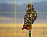 Simplifying the Rule of Thirds