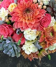 Sympathy - Special Occasions - - Funky Bunches