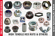 High Tensile Hex NutsHot Forging Items