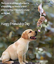 Friendship Day MSG To Share With Friends