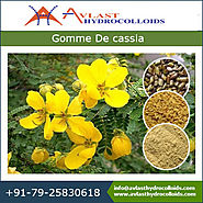 Gomme De Cassia Gelling Properties and Its Application in Food Sector