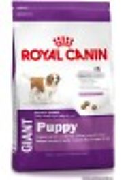Get MINI Adult Dry Food - Royal Canin Product for Small Breed Dogs