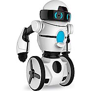 Blog blog : Best Remote Controlled Robot Toys Reviews