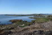 Point Isabel Dog Park