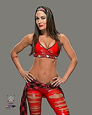 "Brie Bella WWE 2015 Posed Studio Photo (Size: 8"" x 10"")"