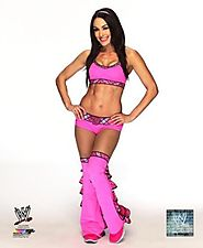 Brie Bella (Bella Twins) - WWE 8x10 Glossy Photo wearing pink 2014 posed