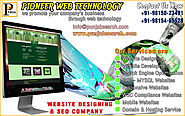 best website companies in ludhiana punjab india