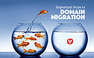 Five Important Considerations When Migrating Your Domain | Vocso
