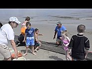 Monmouth County Parks put together a great video to promote its new Wind & Sea Festival 2015