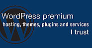 WordPress Premium Themes, Plugins and Services | BobWP