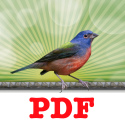 Instant PDF Printer - Print to PDF instantly with built in PDF converter.