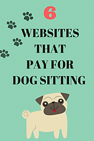 Get Paid for Dog Sitting: 6 Websites that Pay