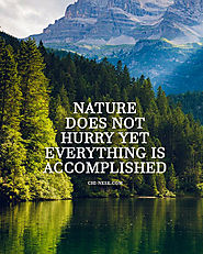 Nature Does Not Hurry Yet Everything is Accomplished - Meaning of Lao Tzu's Quote