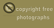 Copyright free photographs for free - Wall-Spot