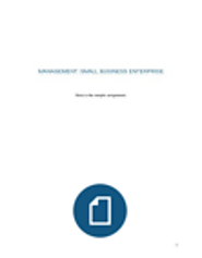 Management - Small Business Enterprise - Assignment Sample