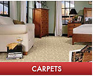 Carpet Cleaning and Water Damage Service for Kansas City & Overland Park