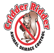 Cridder Ridder - Kansas City Critter Control and Animal Removal Service