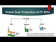 Guar Gum - Processors, Exporters & Suppliers Global - Avlast Hydrocolloids